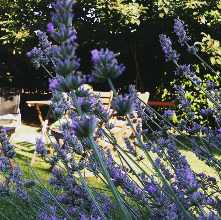 Cinzia Pedrani-la mia casa